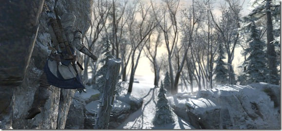 Assassin's Creed 3 Screenshot 20