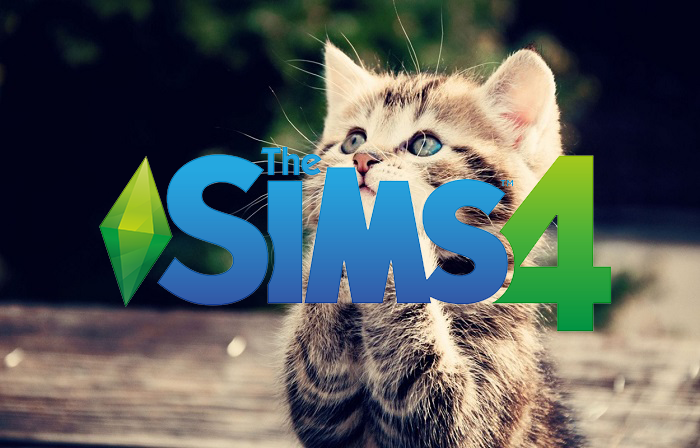 What Time Is Sims Cats And Dogs Available